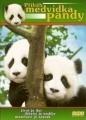 Příběh medvídka pandy