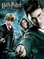 Harry Potter a Fénixov rád