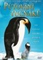 Putování tučňáku